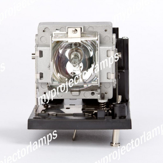 Vivitek D6500 Projector Lamp with Module