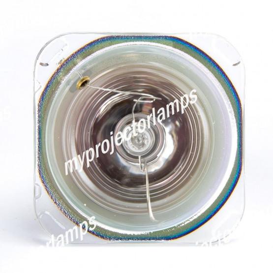Digital Projection (デジタル プロジェクション) 110-284 プロジェクター用電球バルブ