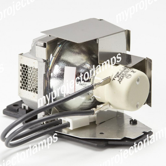 Infocus SP-LAMP-061 Projector Lamp with Module
