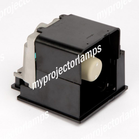 Infocus IN2114 Projector Lamp with Module