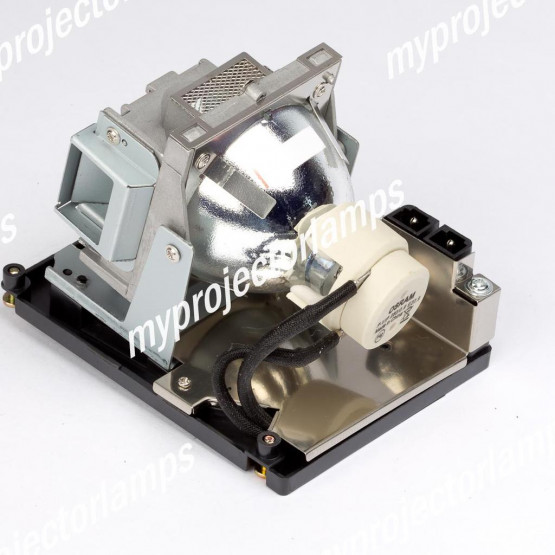 Infocus IN3118HD Projector Lamp with Module