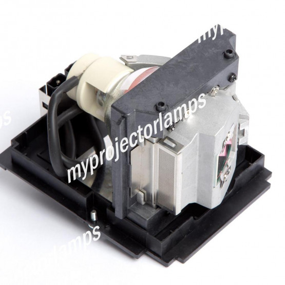 Infocus IN5535L (LAMP #1) Projector Lamp with Module