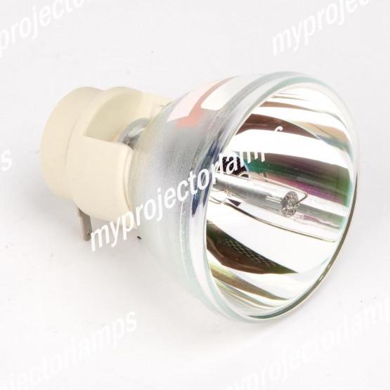 Bare Projector Lamp