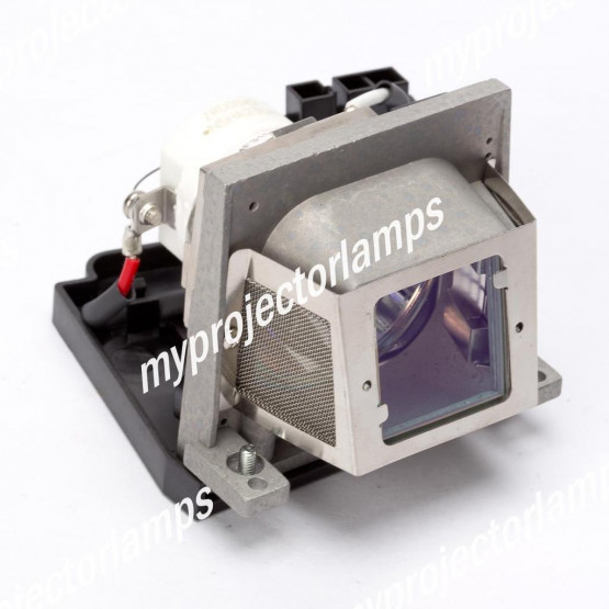 Viewsonic RLC-014 Projector Lamp with Module