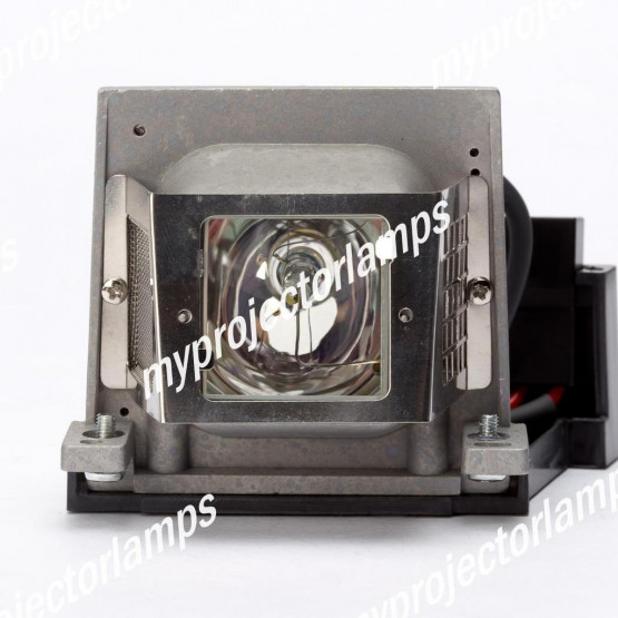 Viewsonic PJ402D-2 Projector Lamp with Module