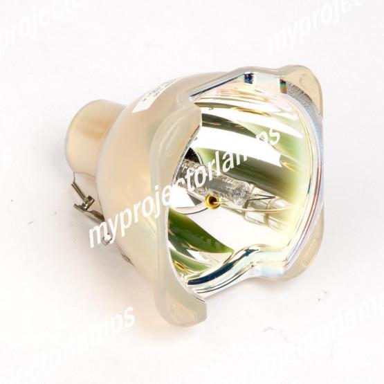 Maginon DLP-2500X (Lampada Singola) Lampada Nuda per Proiettori