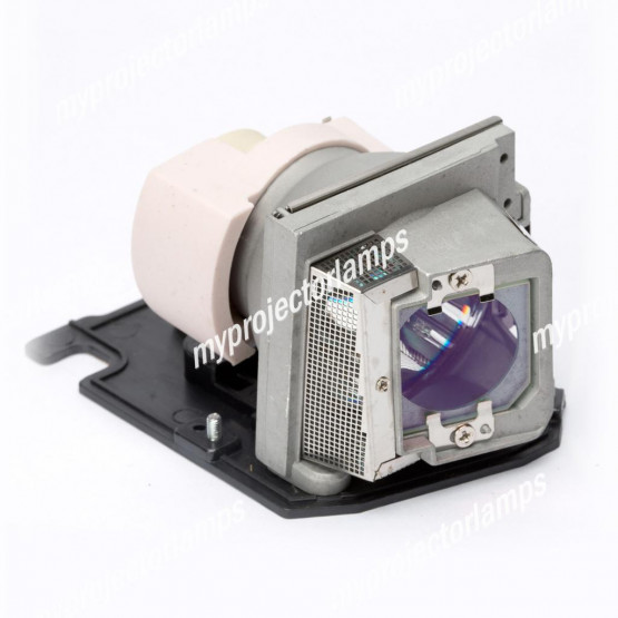 Acer EC.J9900.001 Projector Lamp with Module