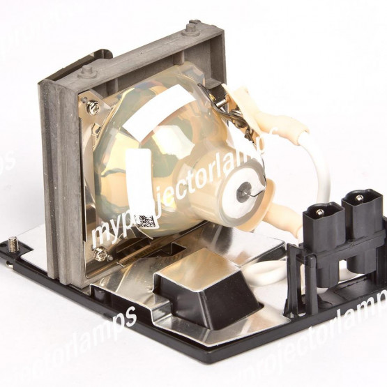 Optoma SP.85F01G001 Projector Lamp with Module