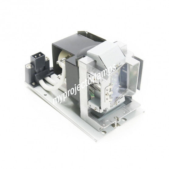 Acer EC.JC100.001 Projector Lamp with Module