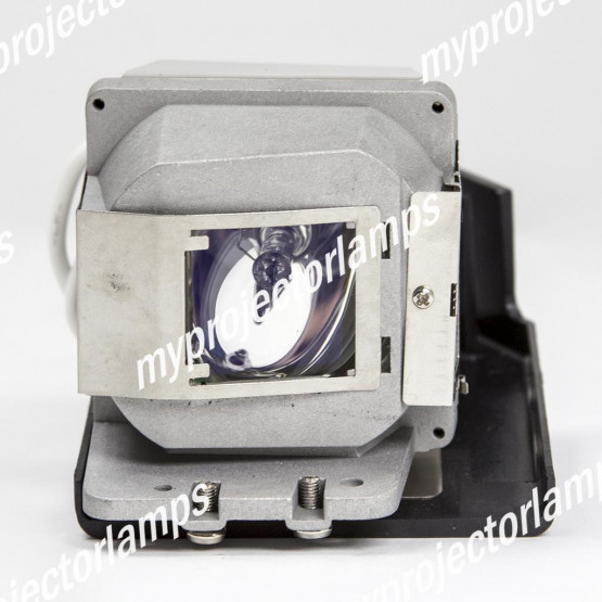 Viewsonic RLC-037 Projector Lamp with Module