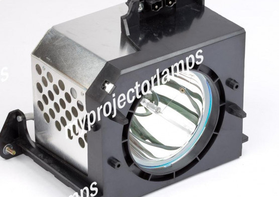 Samsung HLN4365W RPTV Projector Lamp with Module