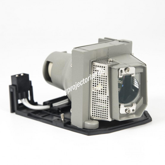 Sanyo POA-LMP138 / 610-346-4633 Projector Lamp with Module