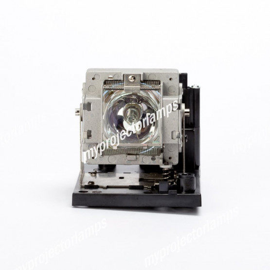 Sanyo POA-LMP117 / 610-335-8406 Projector Lamp with Module