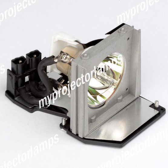Dell EC.J1001.001 Projector Lamp with Module