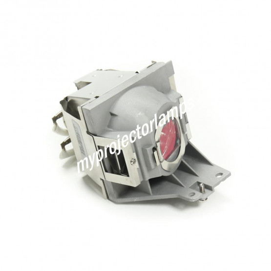 Viewsonic PJD5254 Projector Lamp with Module