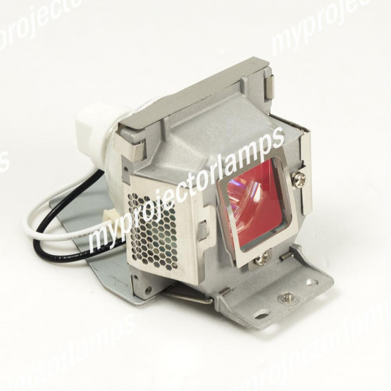 Viewsonic PJD5221 Projector Lamp with Module