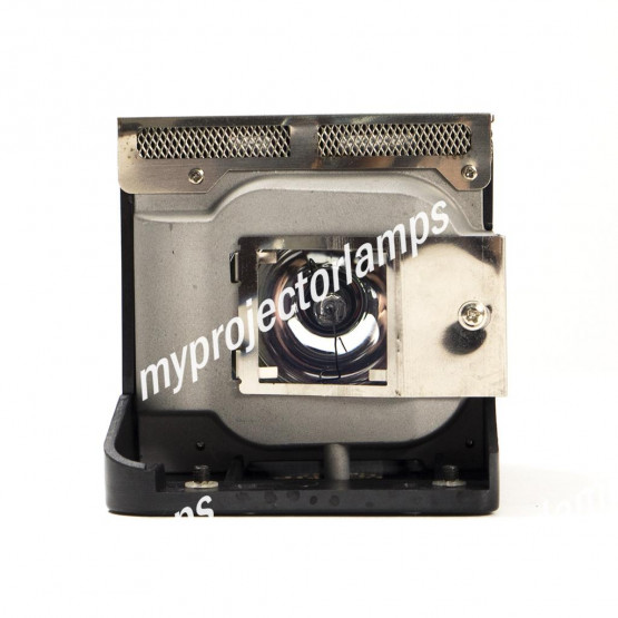 Viewsonic RLC-046 Projector Lamp with Module