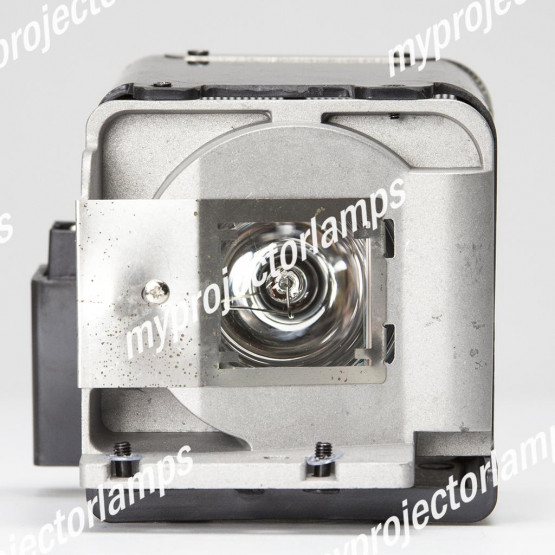 Viewsonic RLC-049 Projector Lamp with Module
