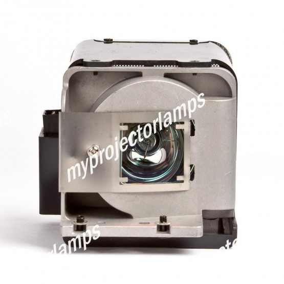 Viewsonic RLC-051 Projector Lamp with Module