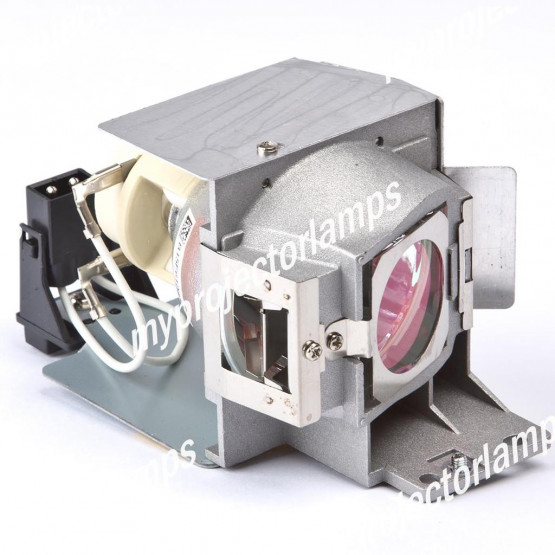 Viewsonic PJD6383 Projector Lamp with Module