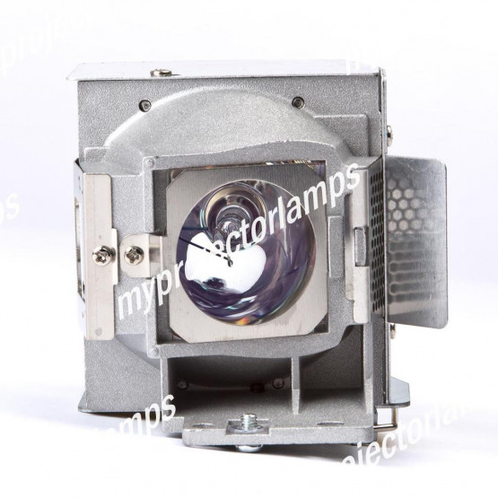 Viewsonic PJD6383s Projector Lamp with Module
