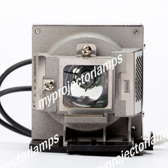 Viewsonic PJD7383 Projector Lamp with Module