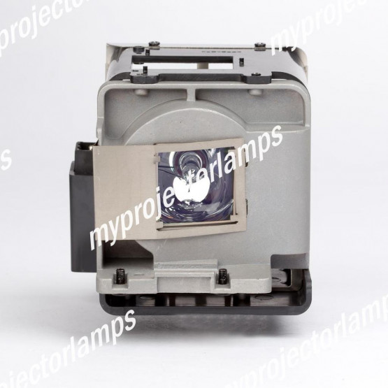 Viewsonic PRO8600 Projector Lamp with Module