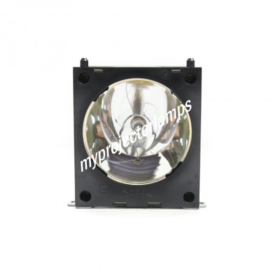 Viewsonic RLC-150-002 Projector Lamp with Module