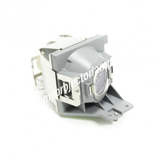 Viewsonic PRO7827HD Projector Lamp with Module