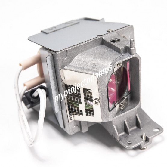 Dell 725-BBDR Projector Lamp with Module