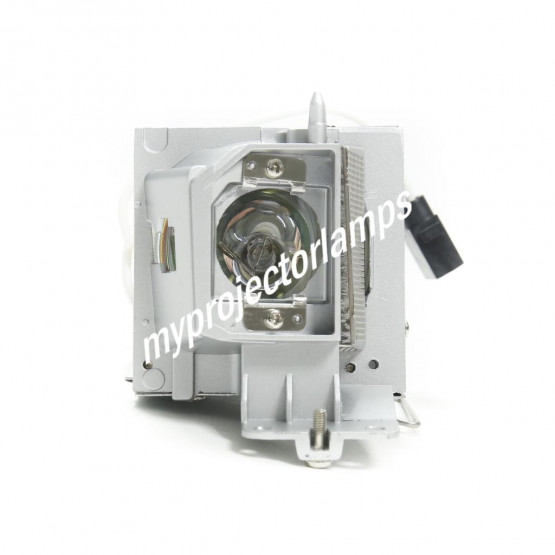 Dell 725-BBDM Projector Lamp with Module