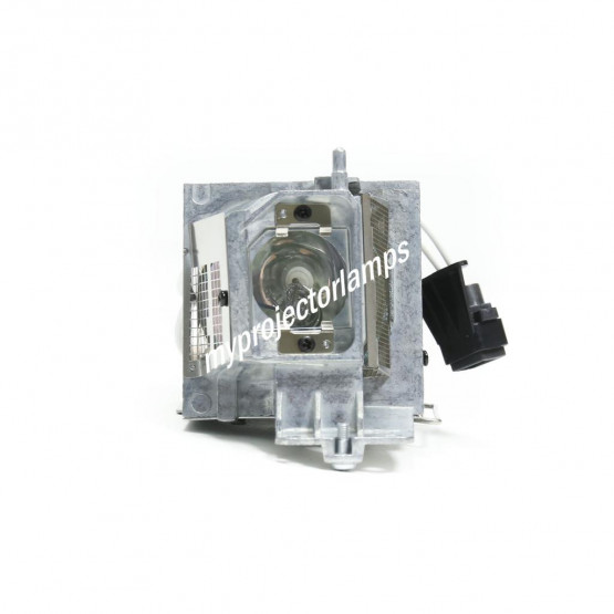 NEC NP40LP Projector Lamp with Module