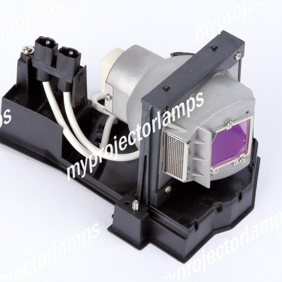 Infocus IN3106 Projector Lamp with Module
