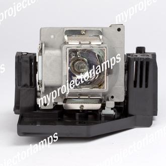 Planar PR5020 Projector Lamp with Module