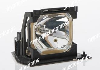 Infocus DP-6155 Projector Lamp with Module