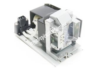 Acer PN-X14 Projector Lamp with Module