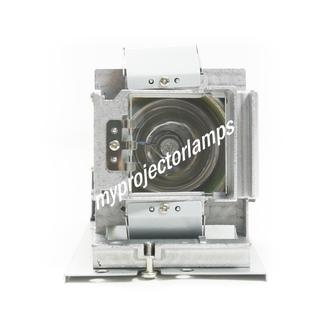 Acer N216 Projector Lamp with Module