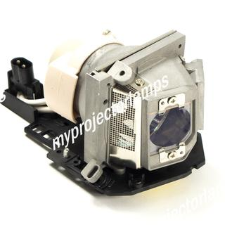 Acer EC.J6900.001 Projector Lamp with Module