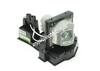 Acer P5260 Projector Lamp with Module