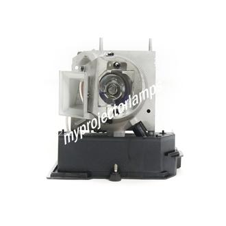 Acer P5271 Projector Lamp with Module