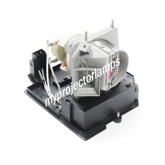 Acer P5290 Projector Lamp with Module