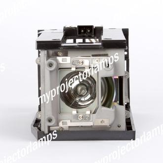 Acer P7203B Projector Lamp with Module