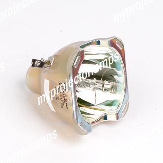 Acer P7290 Bare Projector Lamp