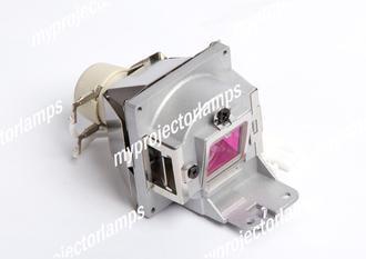 Acer P7500 Projectorlamp met Module