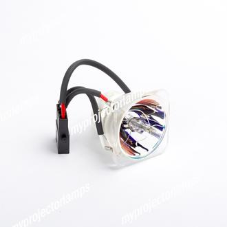 Acer 57.J450K.001 Bare Projector Lamp