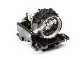 Infocus IN42 Projector Lamp with Module