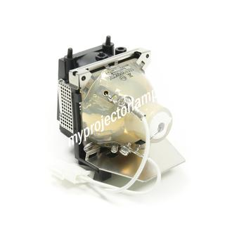 Benq CP220 Projector Lamp with Module