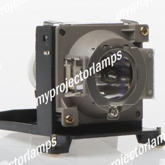 Benq DS650 Projector Lamp with Module