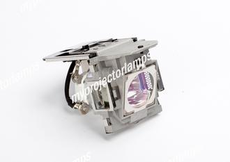 Benq SP870 Projector Lamp with Module