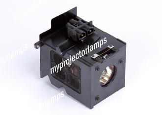 Benq HT480W Projector Lamp with Module